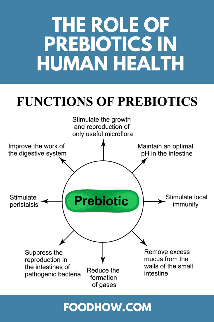 The Role of Prebiotics