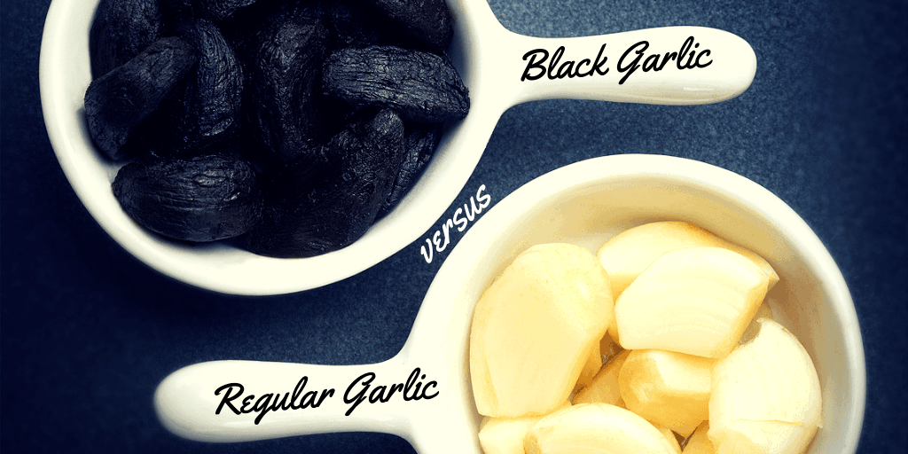 black garlic vs regular garlic