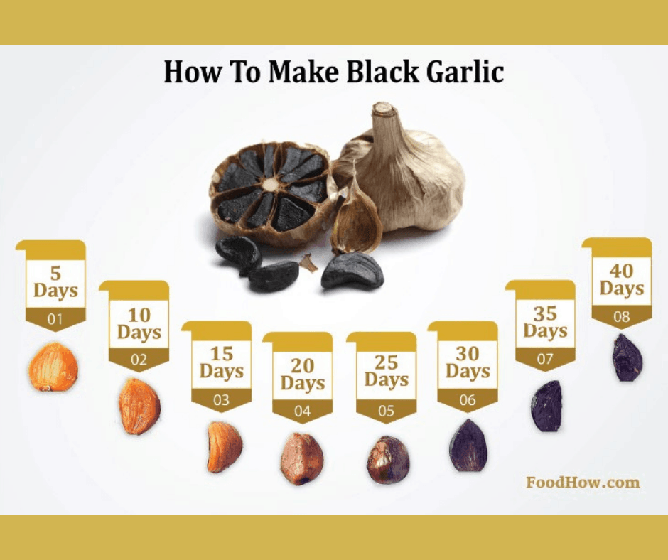 Chart for how to make black garlic