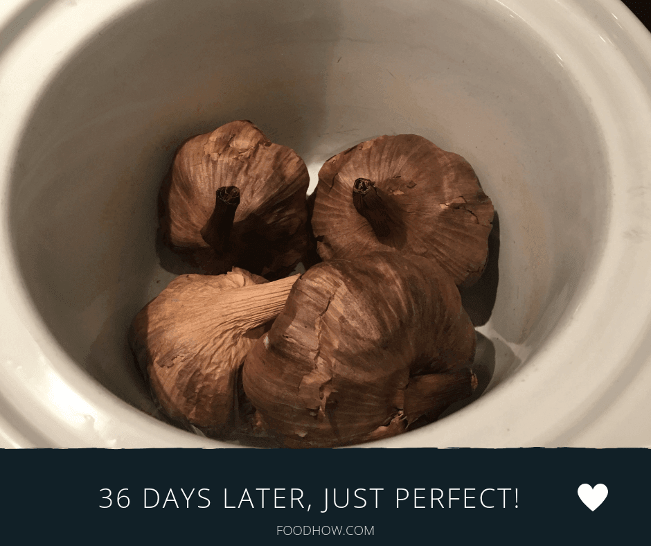 Aged garlic after 36 days in a crockpot