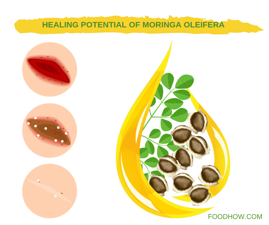 Seeds of Moringa