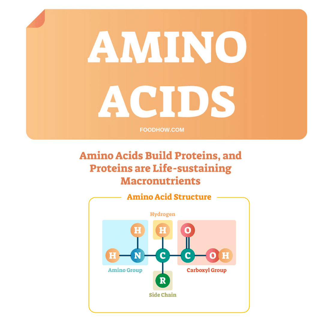 Amino acids structure