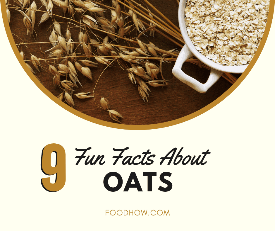 Oatmeal Fun Facts