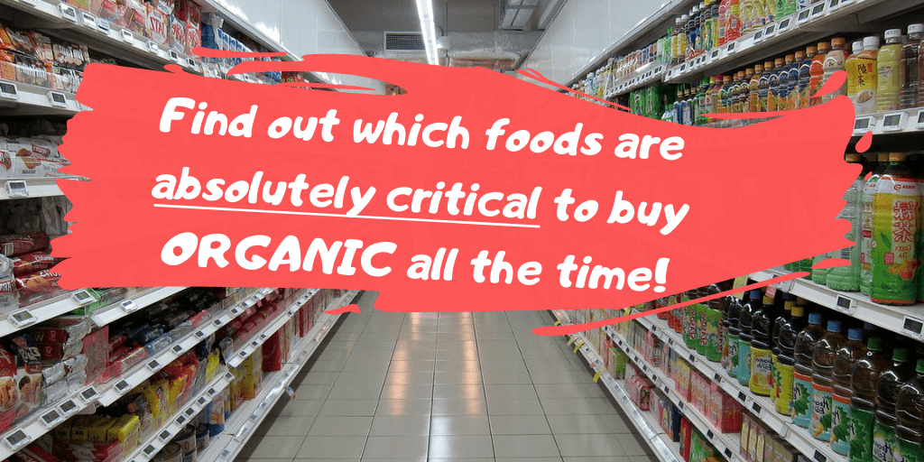 Does Organic Food Have Preservatives And GMOs?