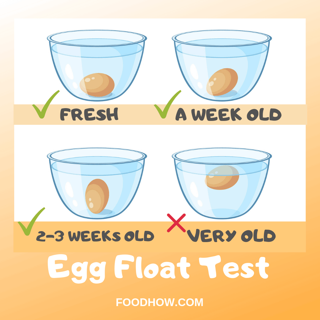 Egg Float Test: