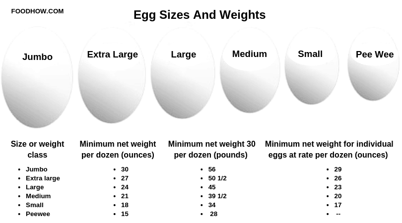 Egg Sizes and Weights