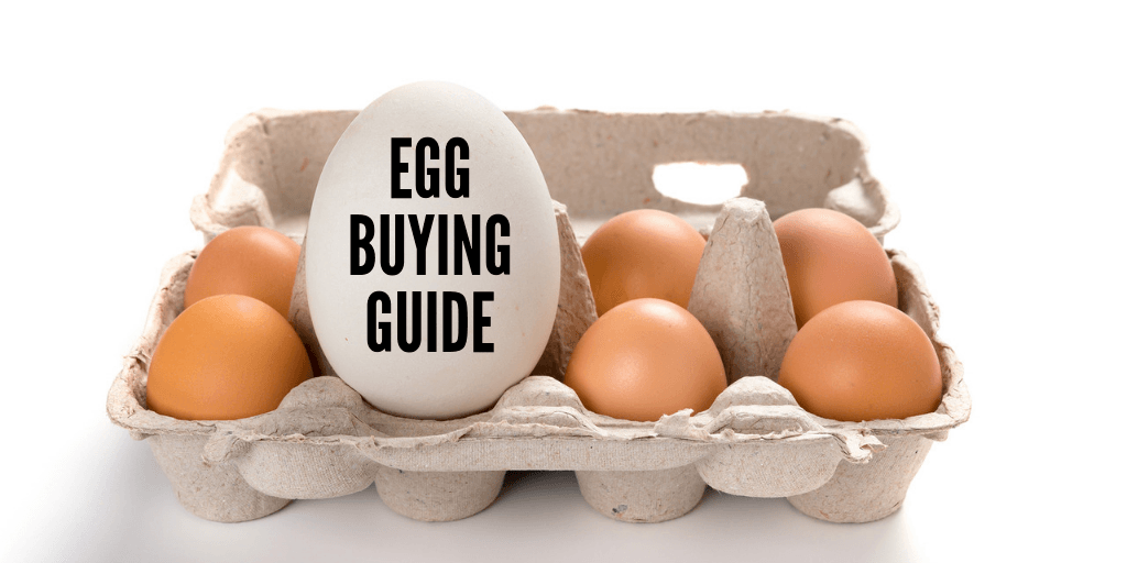 Which Eggs Are The Healthiest – Buying And Cooking Guide