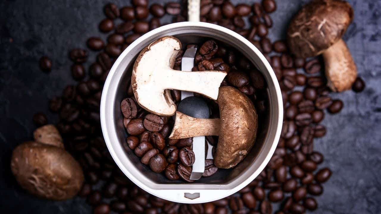 coffee beans mix with mushrooms