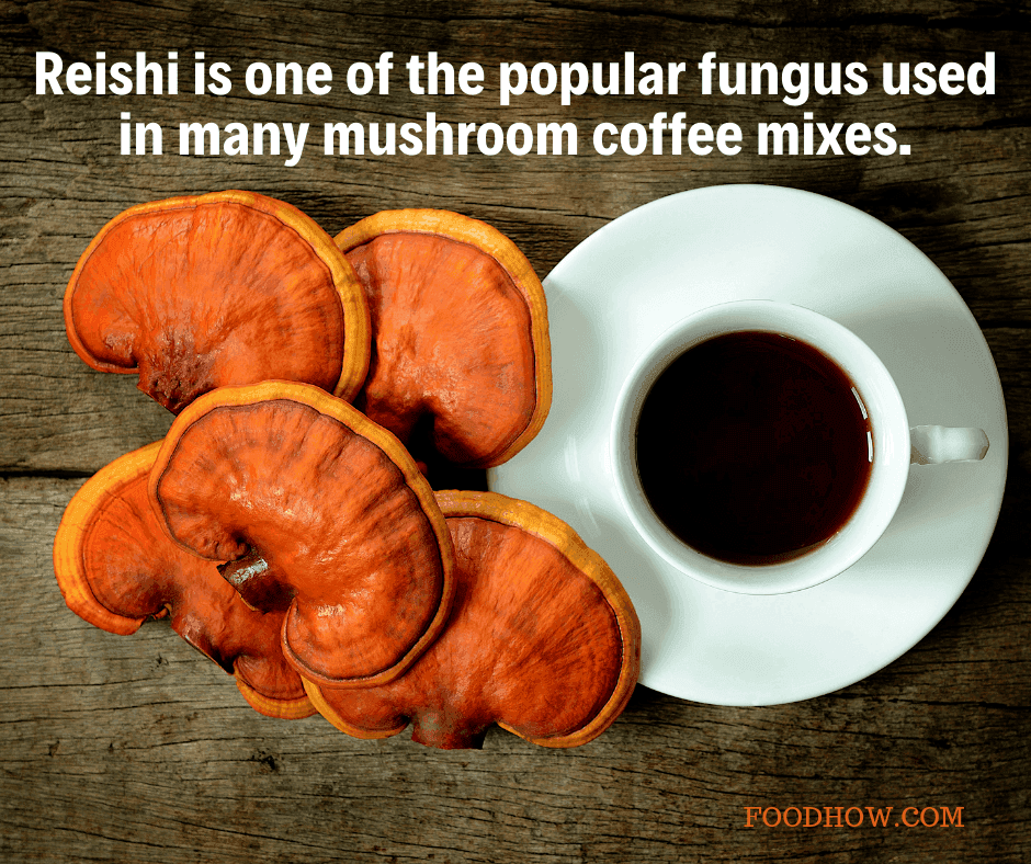 reishi fungi and cup of coffee