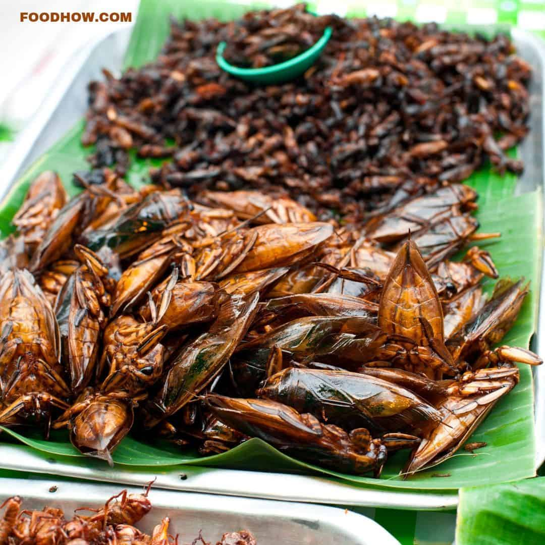 edible insects snacks
