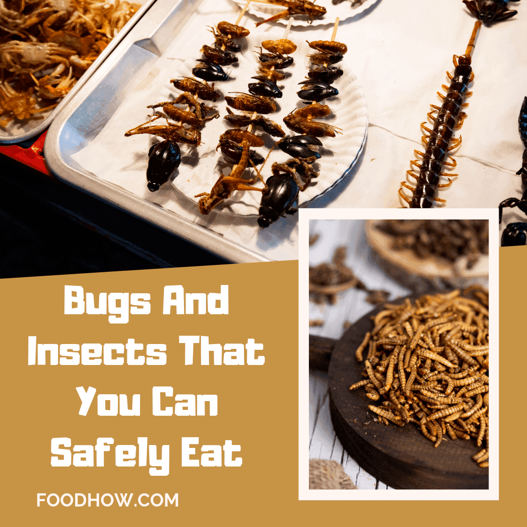Edible bugs and worms