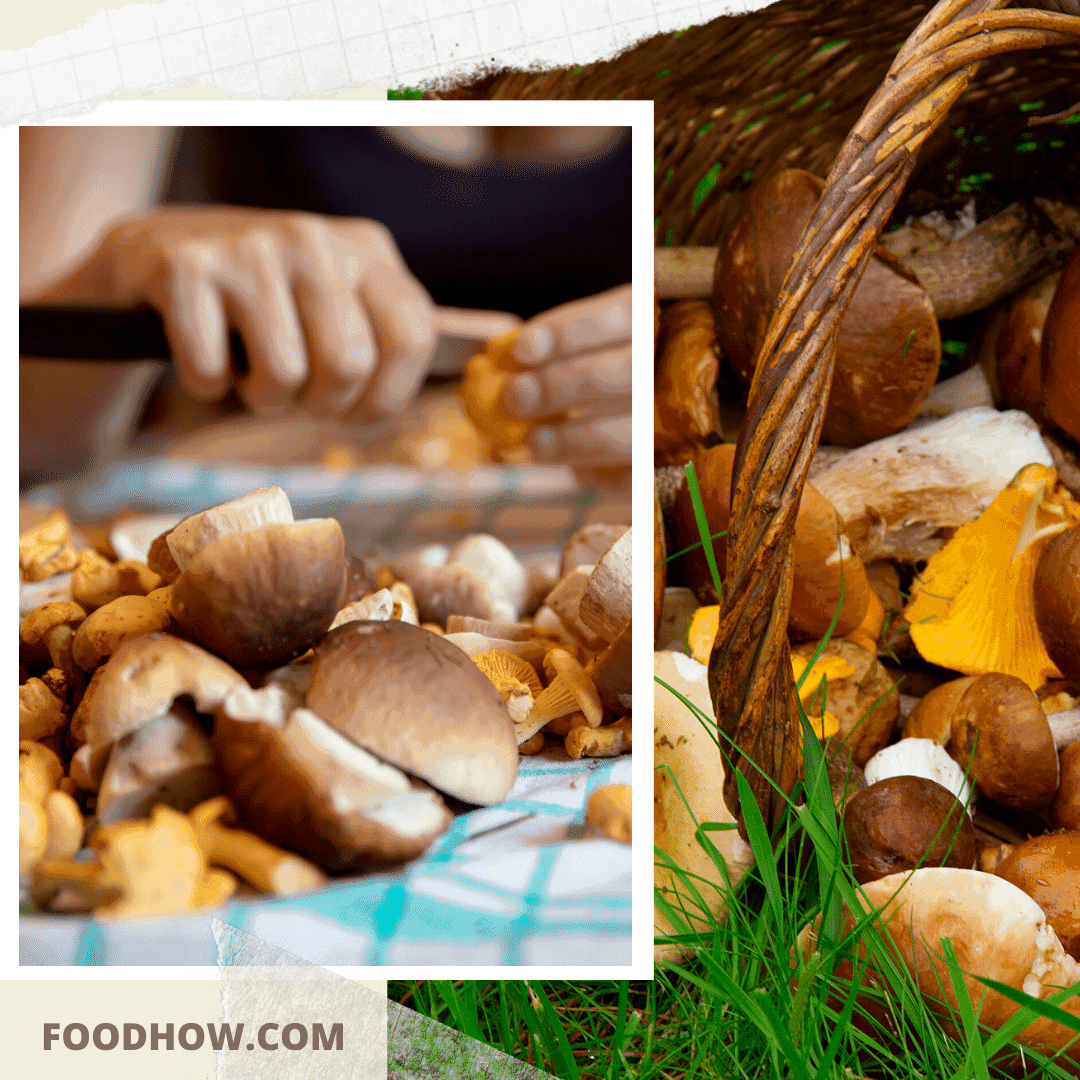cleaning of wild mushrooms