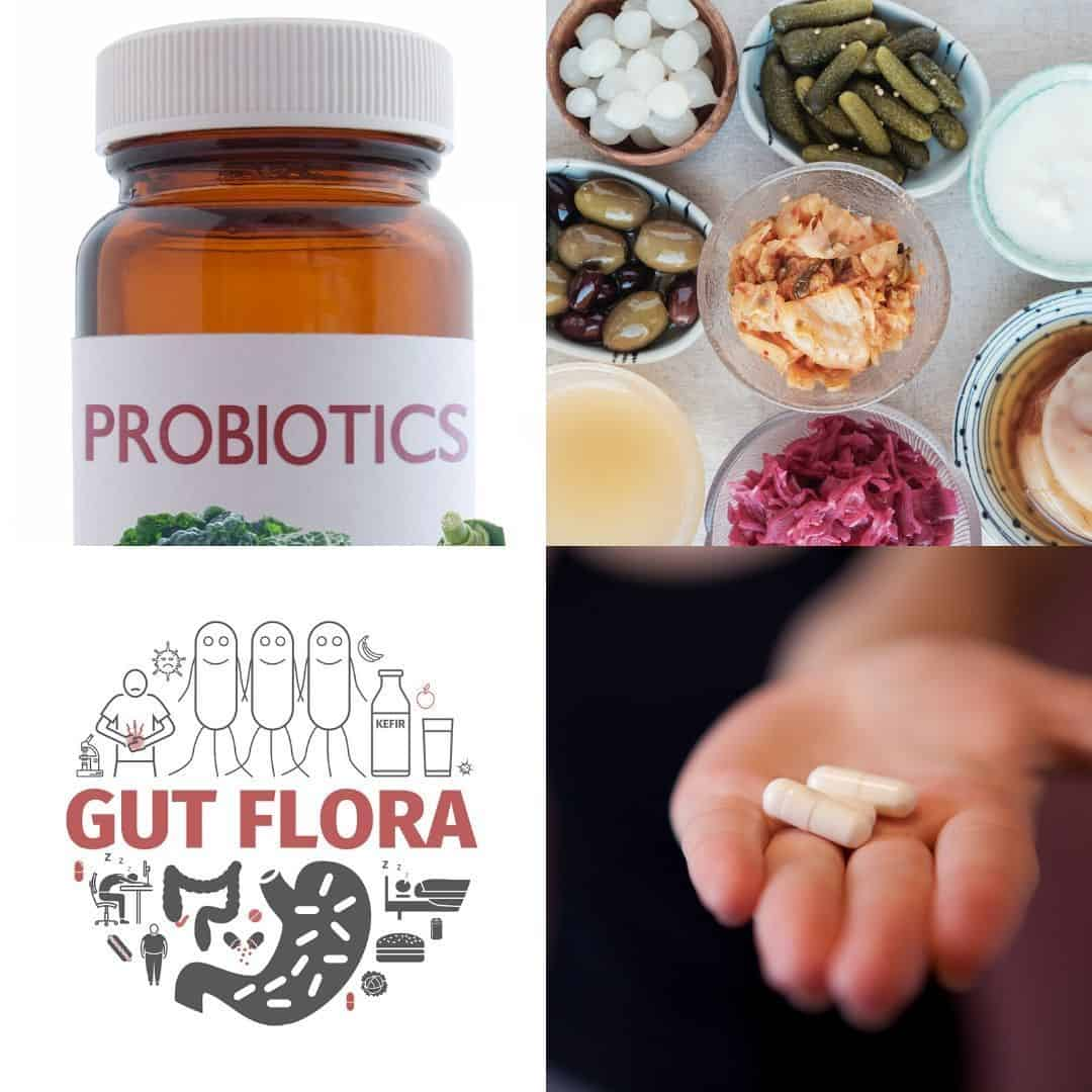 probiotics food and supplements
