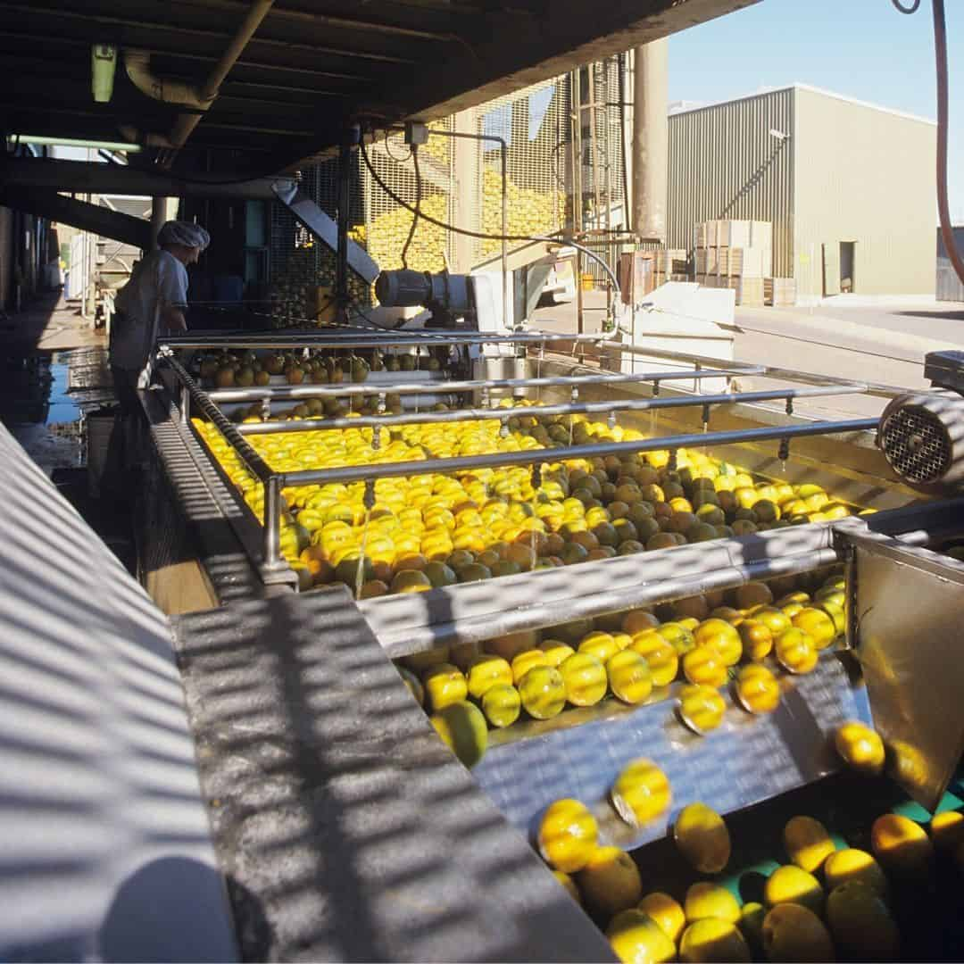 production of citrus juices
