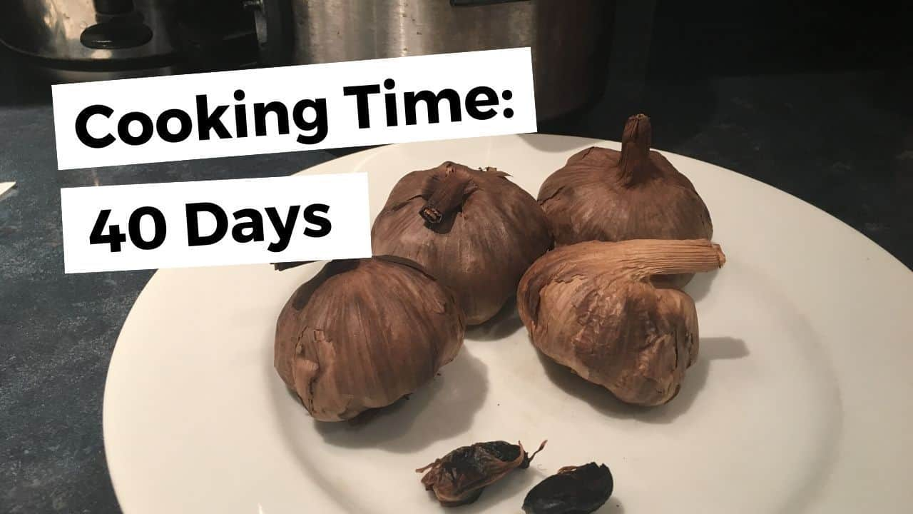 What Is Black Garlic And How To Make It – Slow Cooker Vs. Fermenter