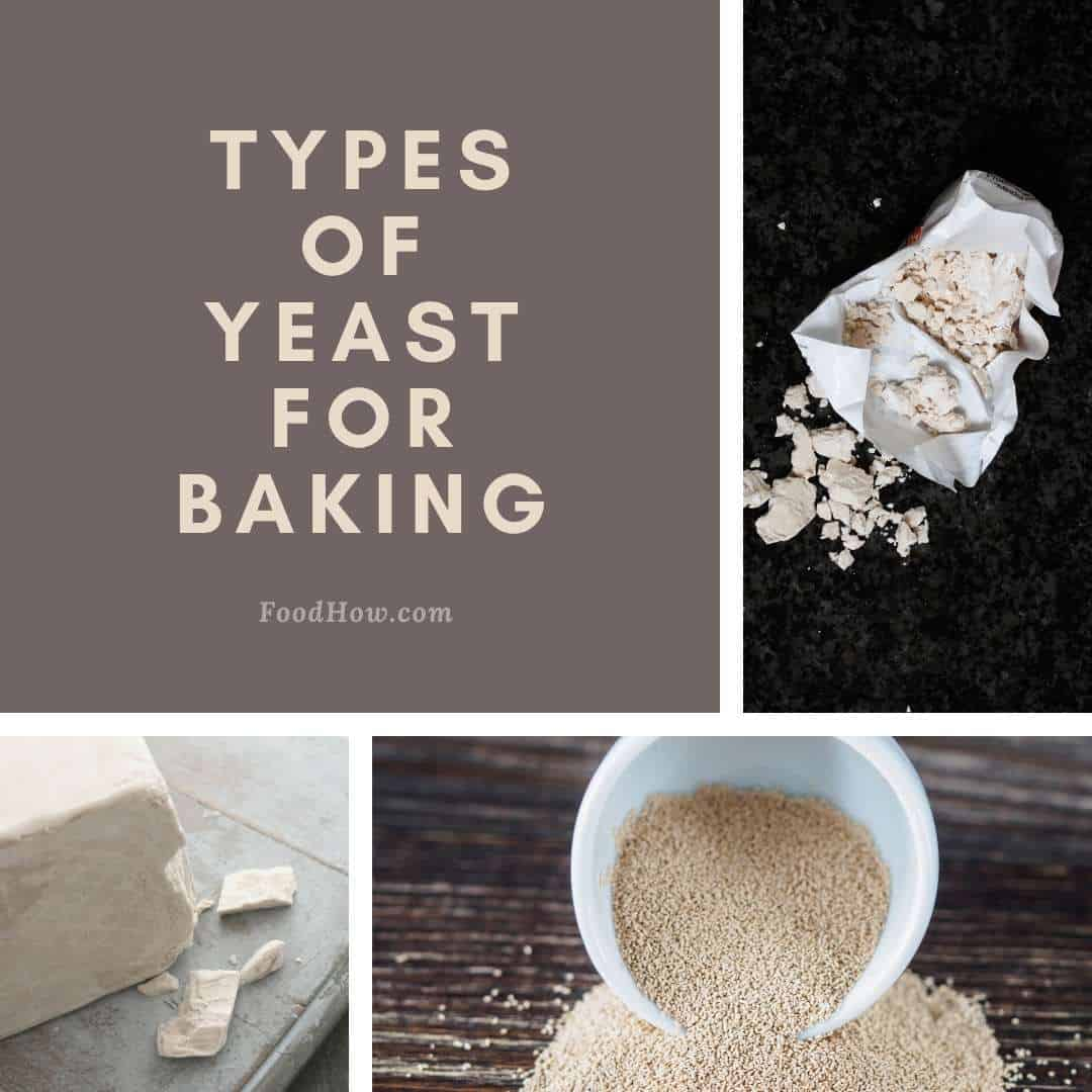 different types of yeast for baking