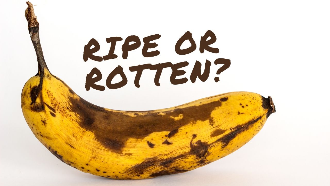 Brown or Black Banana —  Find Out If It Is Rotten or Still Edible?