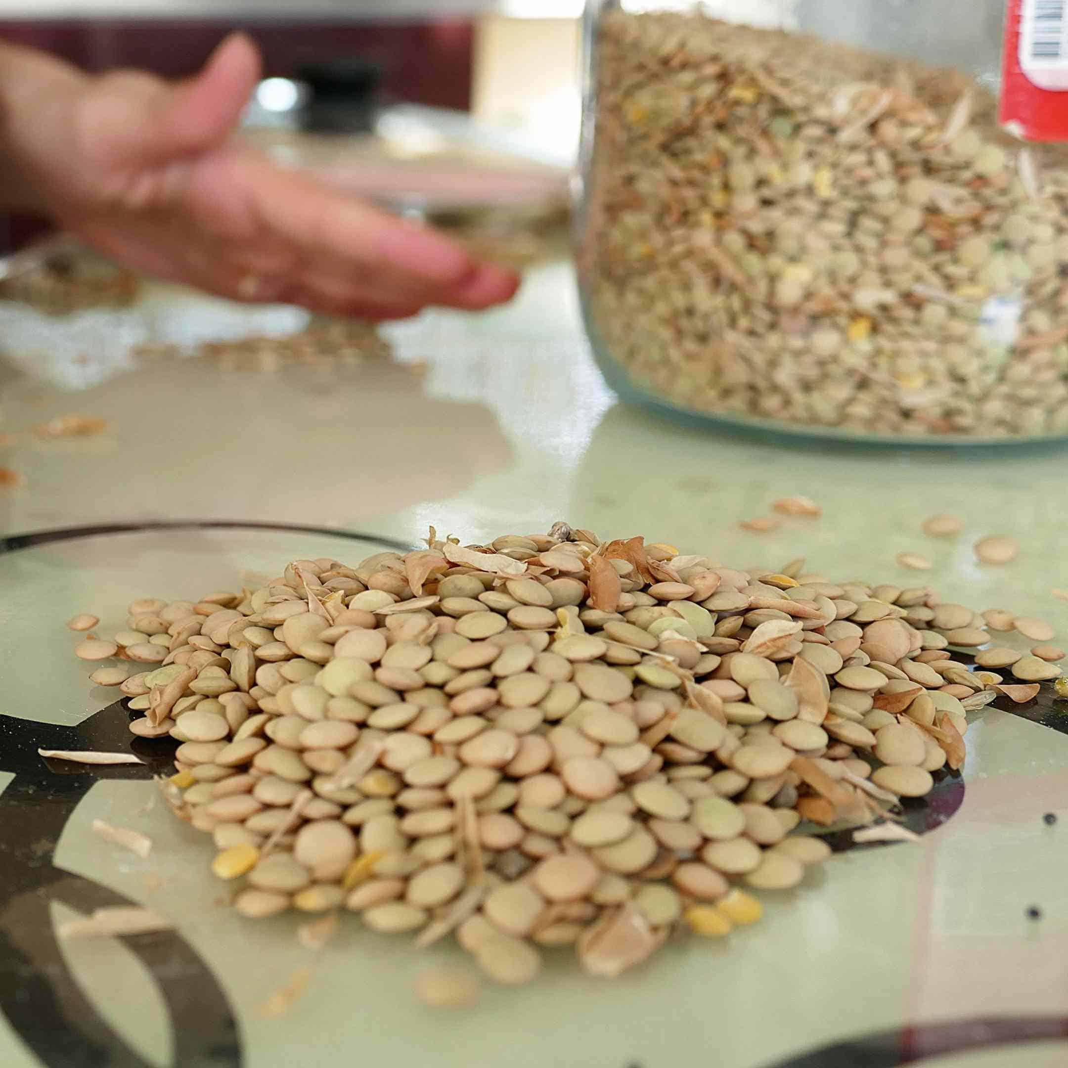 cleaning legumes