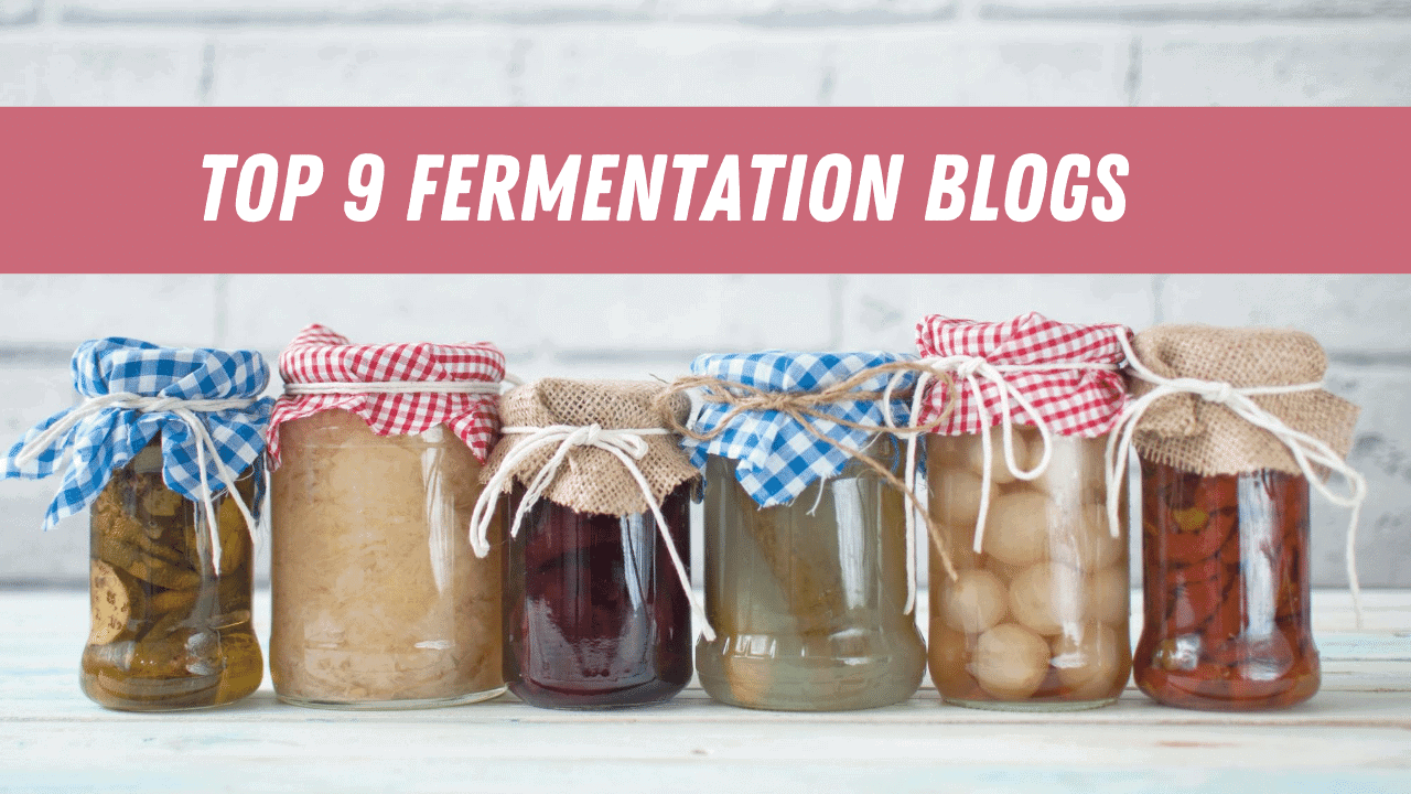 home made fermented foods in the jar