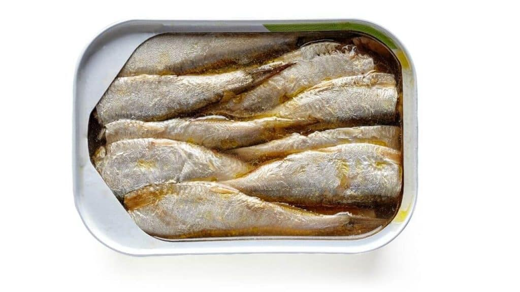 Can You Eat Sardines Every Day? — Yes, But…