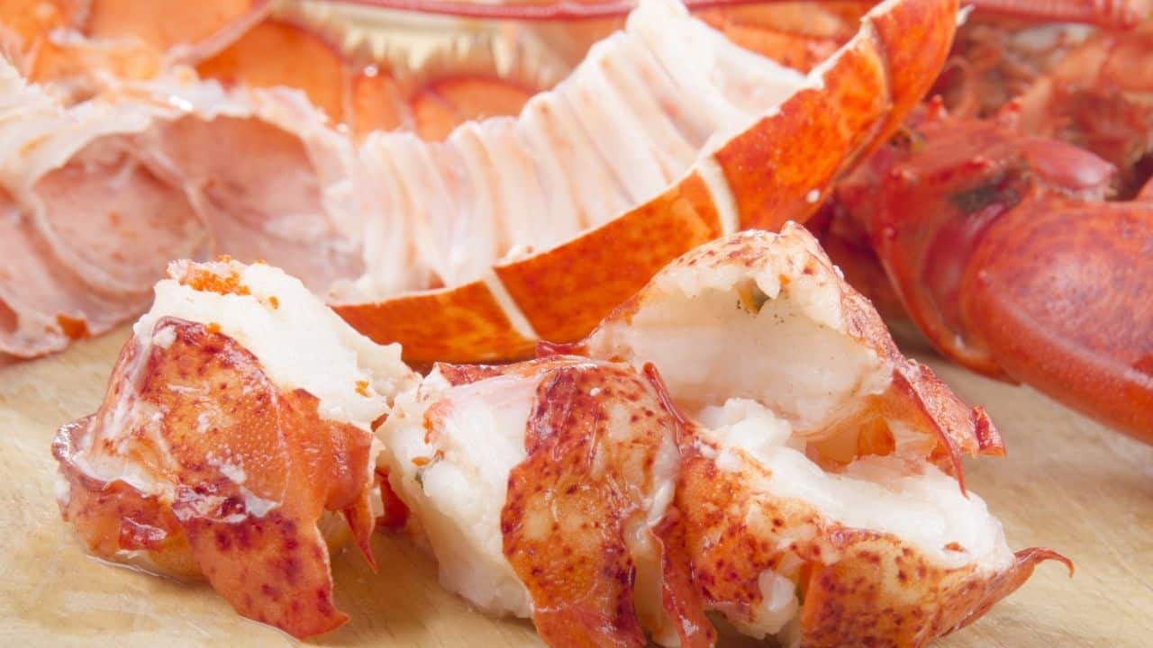cooked lobster meat