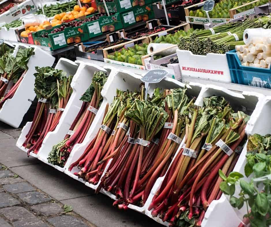 buying rhubarb for recipes